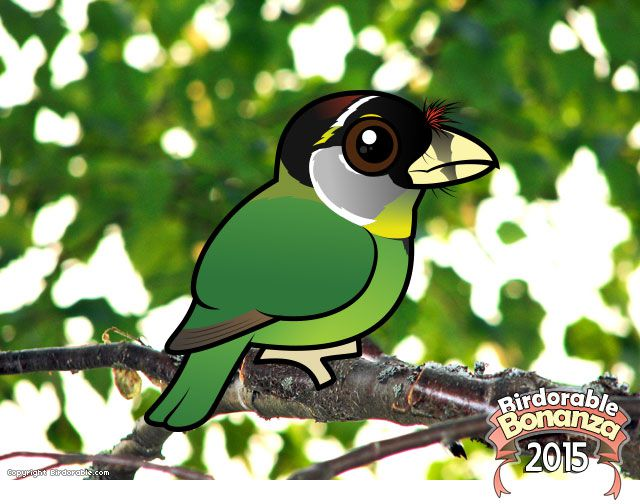 Birdorable Fire-tufted Barbet