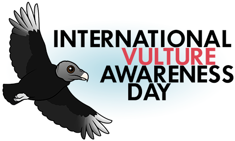International Vulture Awareness Day with Birdorable Black Vulture