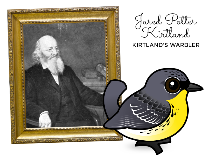 Kirtland's Warbler named after Jared P. Kirtland