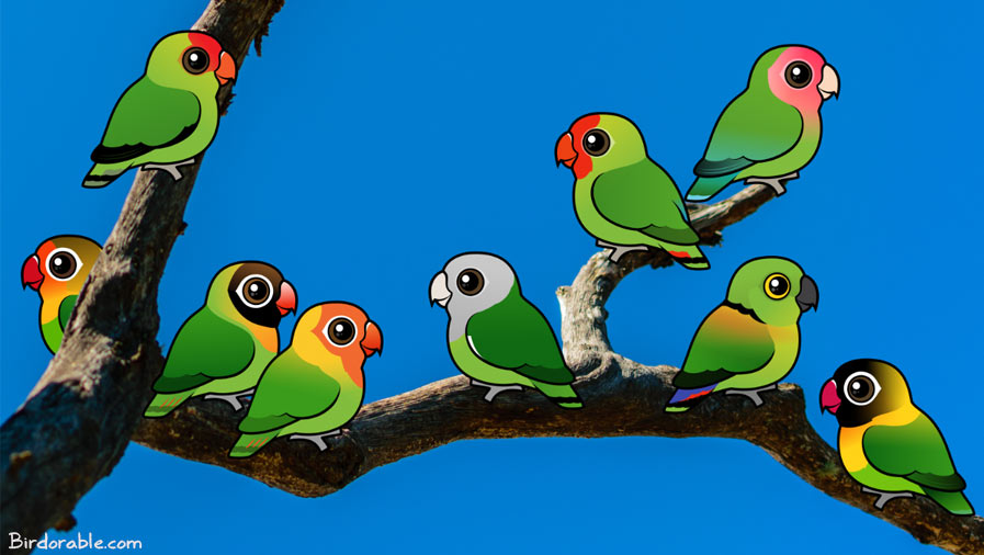 Birdorable Lovebirds on a branch