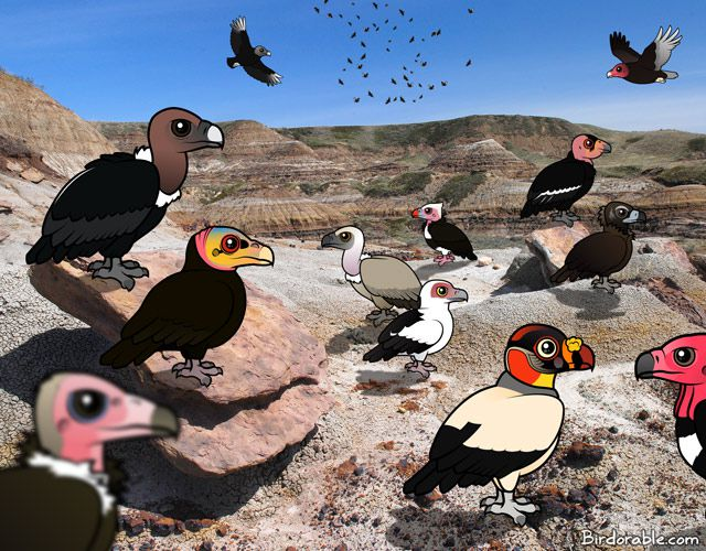 Scene with Birdorable vultures from around the world