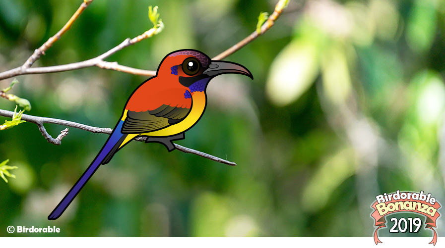 Birdorable Mrs. Goulds Sunbird