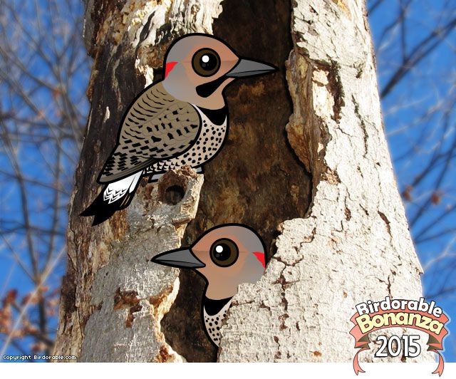 Birdorable Northern Flicker