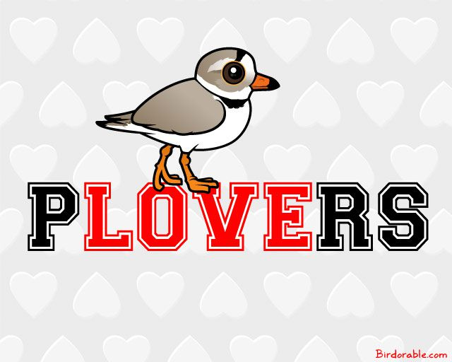 Birdorable Piping Plover on Word