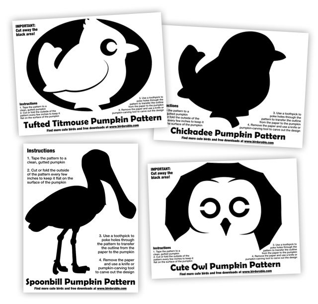 Birdorable Bird Pumpkin Patterns