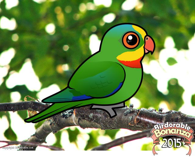 Birdorable Superb Parrot