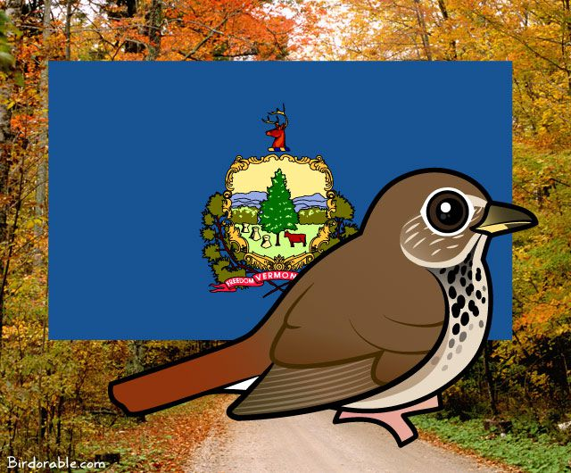 State Birdorable of Vermont: the Hermit Thrush
