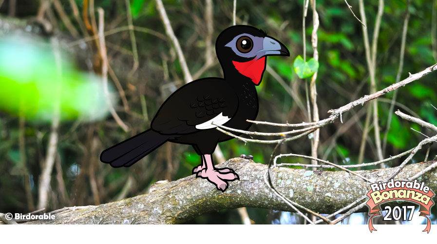 Birdorable White-winged Guan